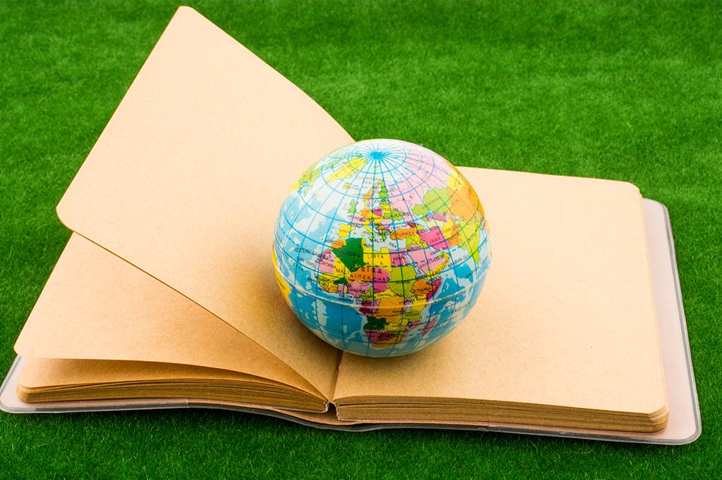 Professores brasileiros vão dar aulas em 19 países