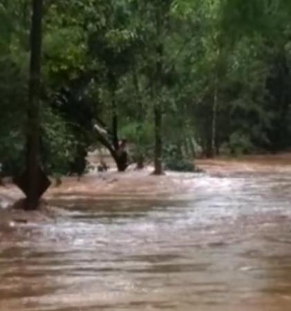 Bombeiro têm princípio de afogamento ao tentar salvar pessoas em árvore no Rio Engano