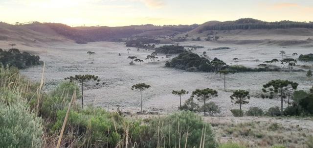 Mycchel Hudsonn Legnaghi | São Joaquim Online